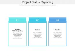 Project Status Reporting Ppt Powerpoint Presentation Shapes Cpb