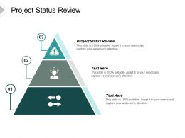 Project Status Review Ppt Powerpoint Presentation File Information Cpb