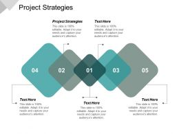 Project Strategies Ppt Powerpoint Presentation File Microsoft Cpb