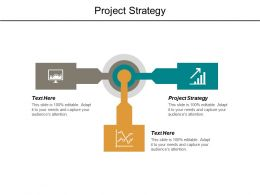 Project Strategy Ppt Powerpoint Presentation Outline Format Ideas Cpb