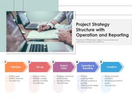 Project Strategy Structure With Operation And Reporting