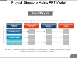 Project Structure Matrix Ppt Model