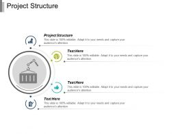 Project Structure Ppt Powerpoint Presentation Infographic Template Microsoft Cpb