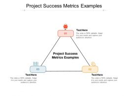 Project Success Metrics Examples Ppt Powerpoint Presentation Inspiration Cpb