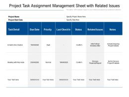 Project Task Assignment Management Sheet With Related Issues