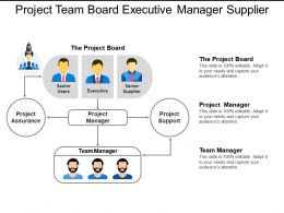 Project Team Board Executive Manager Supplier