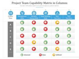 Project Team Capability Matrix In Columns