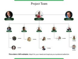 Project Team Example Of Ppt