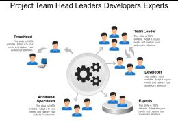 Project Team Head Leaders Developers Experts