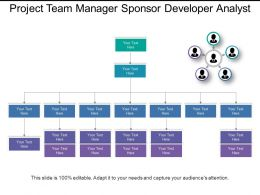 Project Team Manager Sponsor Developer Analyst