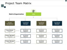 Project Team Matrix Organization Ppt Powerpoint Presentation Inspiration Visual Aids