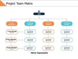 Project Team Matrix Ppt Powerpoint Presentation File Smartart