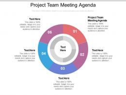 Project Team Meeting Agenda Ppt Powerpoint Presentation Infographics Professional Cpb
