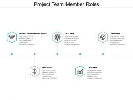 Project Team Member Roles Ppt Powerpoint Presentation Infographic Template Example File Cpb