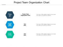 Project Team Organization Chart Ppt Powerpoint Presentation Inspiration Slide Cpb
