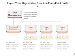 Project Team Organization Structure Powerpoint Guide