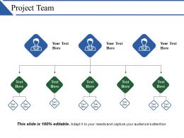 Project Team Powerpoint Show
