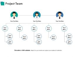 Project Team Powerpoint Themes