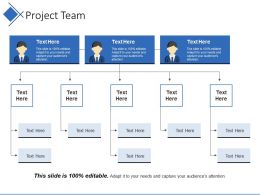 Project Team Ppt Slide Templates