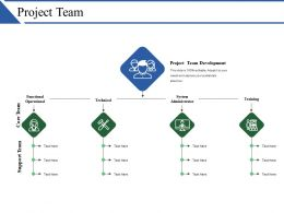 Project Team Ppt Summary