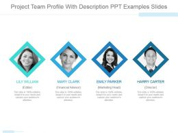 Project Team Profile With Description Ppt Examples Slides
