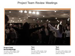 Project Team Review Meetings Ppt Powerpoint Presentation Show Gallery Cpb