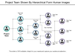 Project Team Shown By Hierarchical Form Human Images