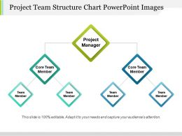 Project Team Structure Chart Powerpoint Images