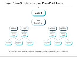 Project Team Structure Diagram Powerpoint Layout