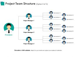 Project Team Structure Example Of Great Ppt