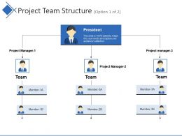 Project Team Structure Example Of Ppt Presentation
