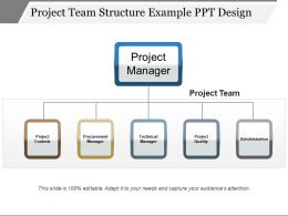 Project Team Structure Example Ppt Design