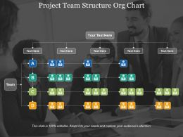Project Team Structure Org Chart