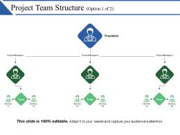 Project Team Structure Powerpoint Presentation Examples