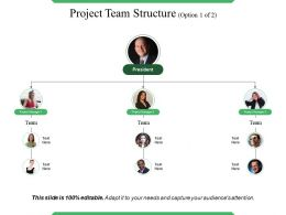 Project Team Structure Powerpoint Slide Designs Download