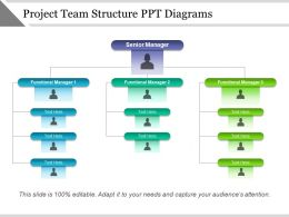 project_team_structure_ppt_diagrams_Slide01