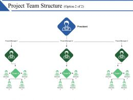 Project Team Structure Ppt Ideas