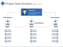 Project Team Structure Ppt Model