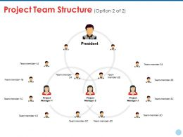 Project Team Structure Ppt Styles Structure