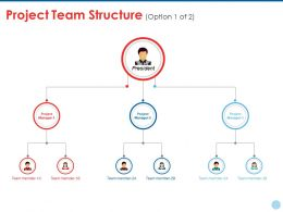 Project Team Structure Ppt Styles Vector