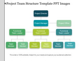 Project Team Structure Template Ppt Images