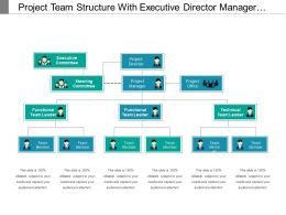 Project Team Structure With Executive Director Manager Officer Leaders And Members