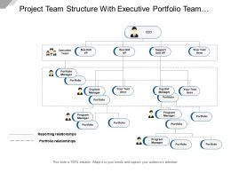 Project Team Structure With Executive Portfolio Team And Program Manager