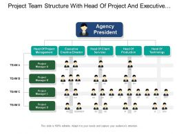 project_team_structure_with_head_of_project_and_executive_creative_directors_Slide01