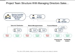Project Team Structure With Managing Directors Sales Distribution And Material Management