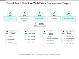 Project Team Structure With Sales Procurement Project And I.T Director
