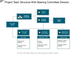 Project Team Structure With Steering Committee Director Manger Officer Application And Technical Leader