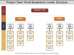 Project Team Work Breakdown Levels Structure