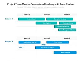Project Three Months Comparison Roadmap With Team Review