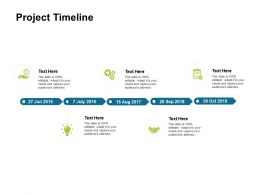 Project Timeline 2015 To 2019 Ppt Powerpoint Presentation Summary Files